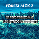 Forest Pack 13 Professional Lightroom Presets - GraphicRiver Item for Sale