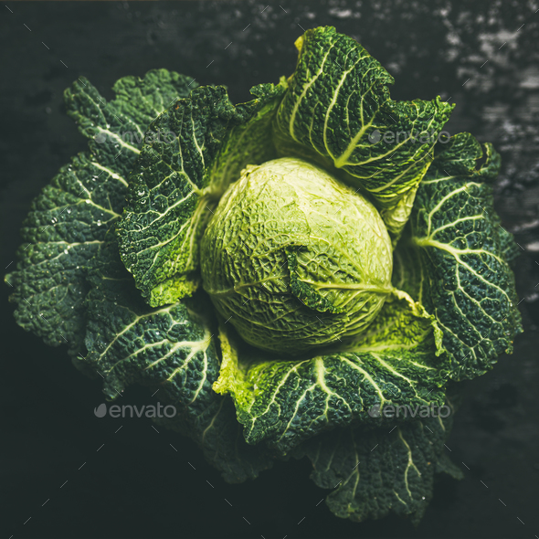Raw fresh green cabbage over dark background, square crop - Stock Photo - Images