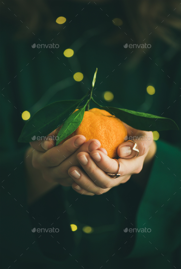 Tangerine fruit in hands of lady wearing green dress - Stock Photo - Images
