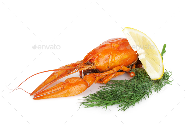 Boiled crayfish with lemon slice and dill - Stock Photo - Images