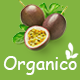 Organico - Fresh Fruits Responsive WooCommerce WordPress Theme - ThemeForest Item for Sale