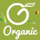 Organic - Food & Healthy Responsive Prestashop 1.7 Theme