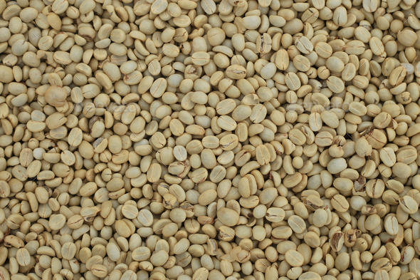 Un-roast arabica raw coffee beans close up - Stock Photo - Images