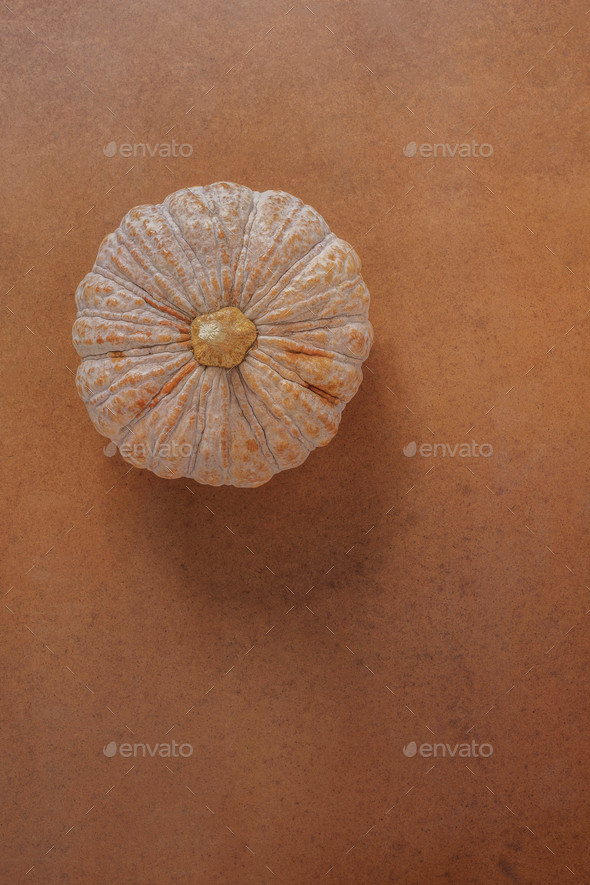 Pumpkin on wooden floor - Stock Photo - Images