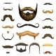Set of Mustache and Beard of Men Hipster