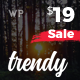 Trendy Pro - Responsive WordPress News Magazine Blog Theme