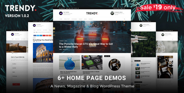 Trendy Pro - Responsive WordPress News Magazine Blog Theme - Personal Blog / Magazine