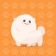 Pomeranian Cartoon Dog