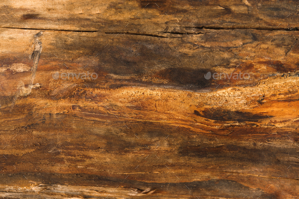 Brown natural wood texture closeup background - Stock Photo - Images