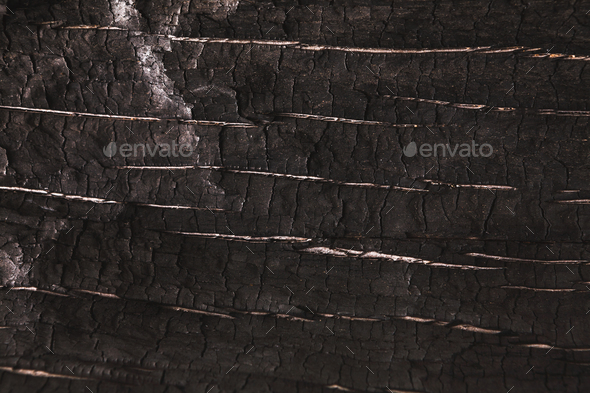 Dark gray or black wood texture closeup background - Stock Photo - Images