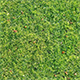 Textures grass - 3DOcean Item for Sale
