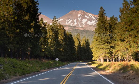 Mount Shasta Shastina Cascade Range California Nationa Forest - Stock Photo - Images
