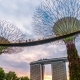 Sunset Landscape of Gardens By the Bay in Singapore. August 2017 - VideoHive Item for Sale