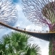 Landscape of Gardens By the Bay in Singapore. August 2017 - VideoHive Item for Sale