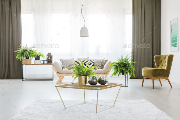 Monochromatic living room with ferns - Stock Photo - Images