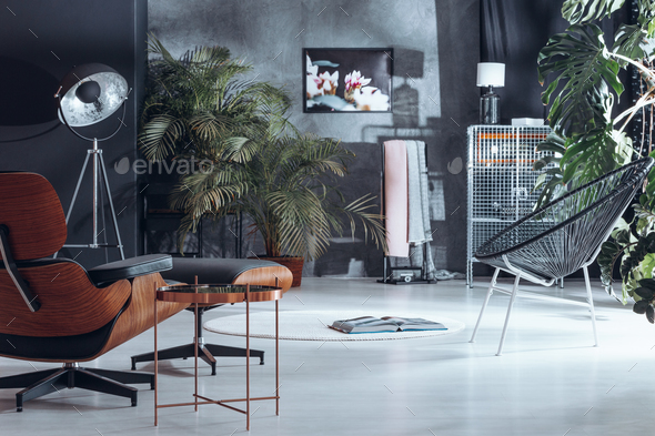 Living room with plant decoration - Stock Photo - Images