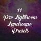 11 Pro Lightroom Landscape Presets