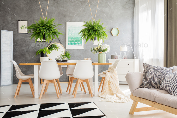 Ferns above dining table - Stock Photo - Images