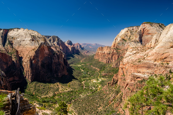 Landscape in Zion National Park - Stock Photo - Images