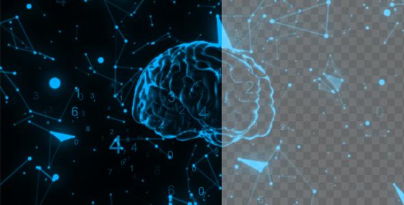 VideoHive Matematic Brain With Plexsus 21149236