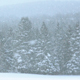 Snow Storm - VideoHive Item for Sale