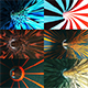 Tunnels (Pack of 9) - VideoHive Item for Sale