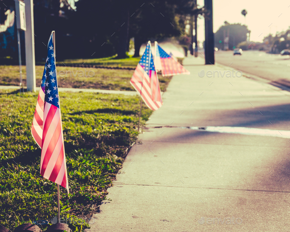 USA Flag On Lawn - Stock Photo - Images