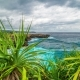 A  View of the Rocks and the Ocean Through the Leaves of Tropical Plants on the Island of Nus - VideoHive Item for Sale