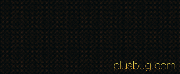 Plusbug