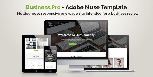 ThemeForest Business.Pro Adobe Muse Template 20957621