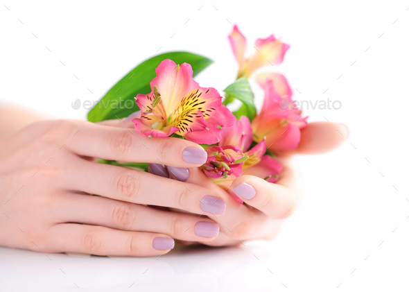 Hands of a woman with pink manicure on nails and flowers alstroe - Stock Photo - Images