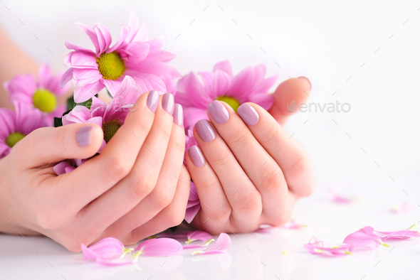 Hands of a woman with pink manicure on nails and pink flowers - Stock Photo - Images