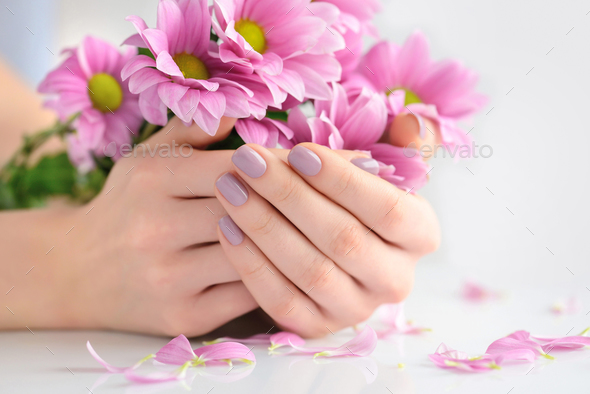 Hands of a woman with pink manicure on nails and pink flowers on - Stock Photo - Images