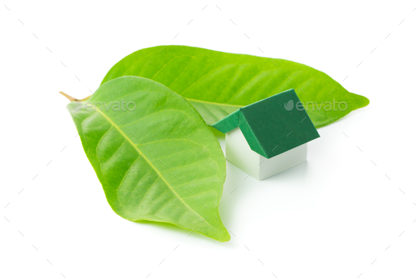 Eco green house - Stock Photo - Images
