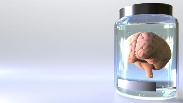 VideoHive Human Brain in a Jar 21160851