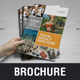 Multipurpose Brochure Catalog Design v4