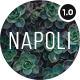 Napoli - Modern Photography Portfolio Responsive HTML Template - ThemeForest Item for Sale