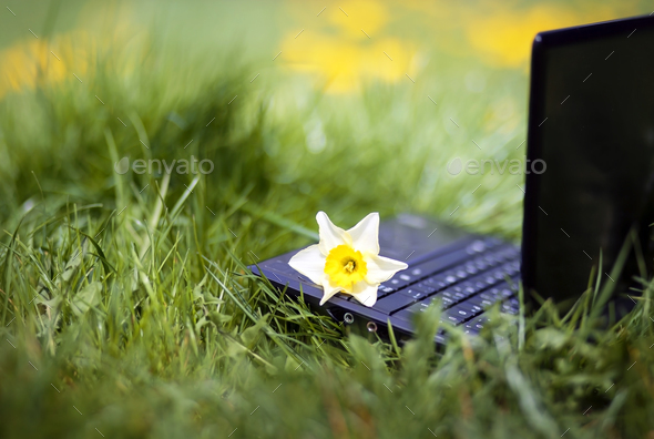 Online learning concept - Stock Photo - Images
