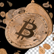 Bitcoin Array Rotation - VideoHive Item for Sale