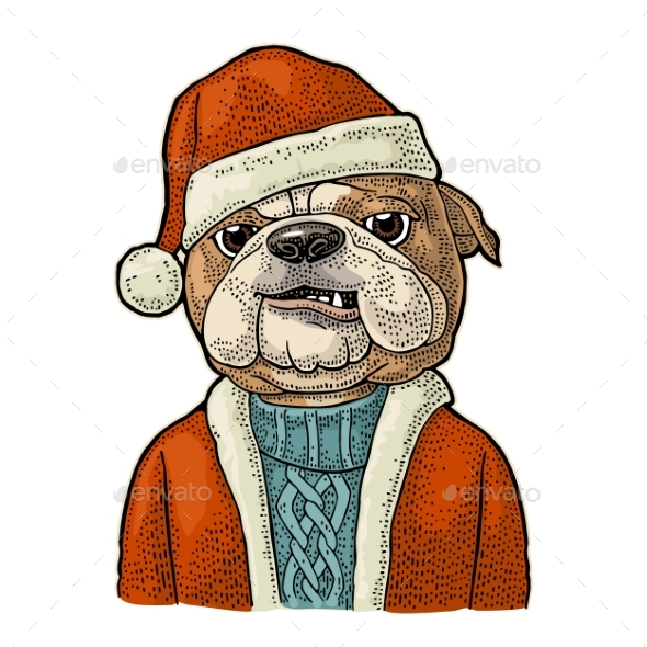 Dog Santa Claus in Hat - Animals Characters