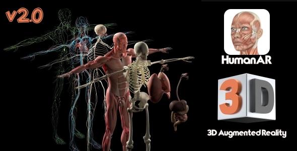 HumanAr Anatomy - CodeCanyon Item for Sale