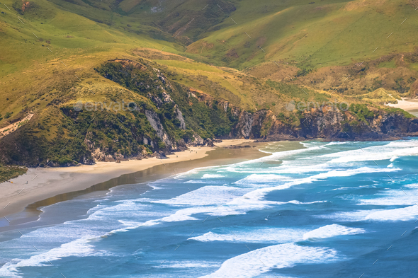 Otago Peninsula coast - Stock Photo - Images