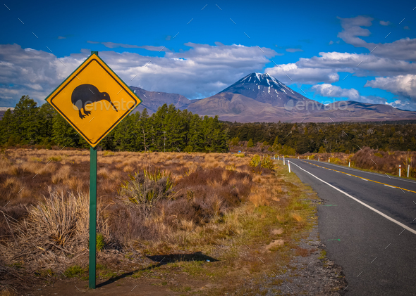 Kiwi sign in NZ landscape - Stock Photo - Images