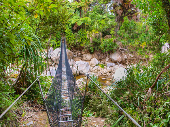 Metal Swingbridge on the Heaphy Track - Stock Photo - Images