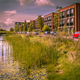 Eco friendly urban street with natural river bank - PhotoDune Item for Sale