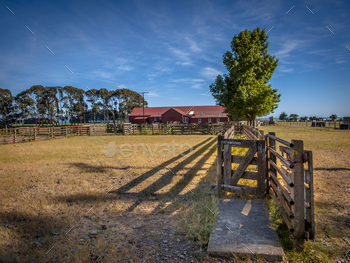 Old New Zealand ranch