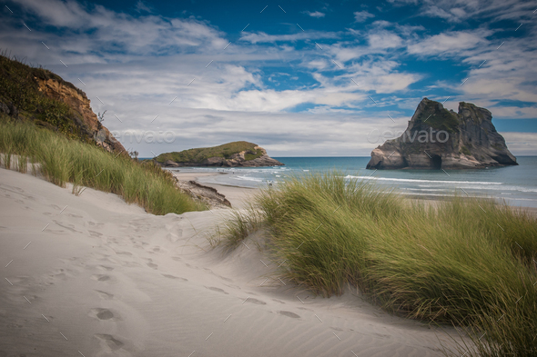 Inviting path Dune vegetation at Famous Wharariki Beach vintage - Stock Photo - Images