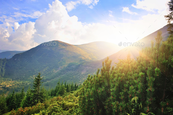 Fantastic day in a beautiful place in sunlight. Dramatic and pic - Stock Photo - Images