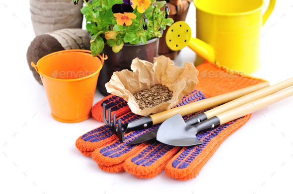 Gardening tools and seed and spring flowers on a white backgroun - Stock Photo - Images