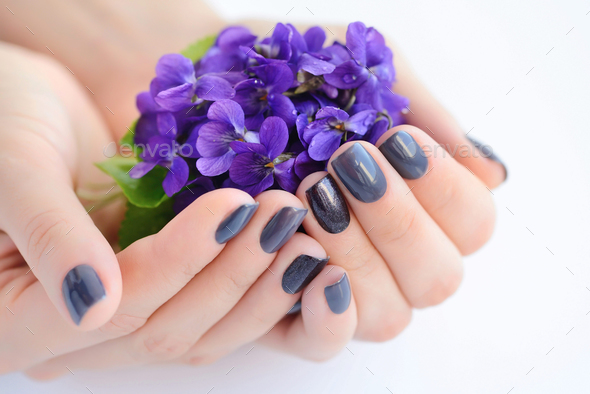 Hands of a woman with dark manicure on nails and flowers violets - Stock Photo - Images
